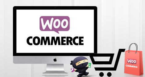 WooCommerce Development Services in Vaughan