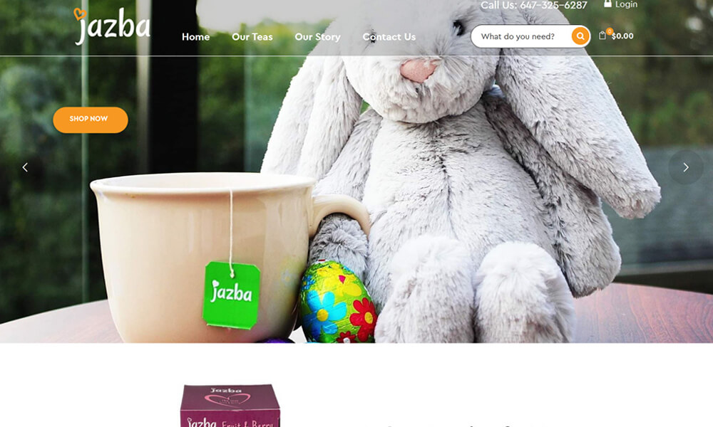 eCommerce Website Design Company Vaughan